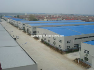 Modern Prefab Steel Structure Plant (DG1-027) pictures & photos