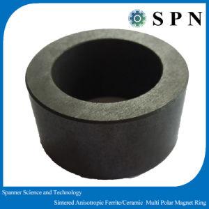 Ferrite Permanent Magnet Rings Anisotropic Multipoles pictures & photos