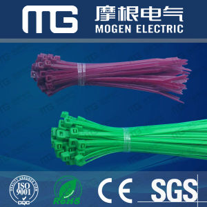 Nylon Cable Ties pictures & photos