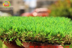 PE China Artificial Grass for Leisure Landscape Grass pictures & photos