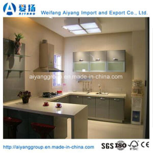 Stainless Steel Kitchen Cabinet with Customized Designs Made in China pictures & photos