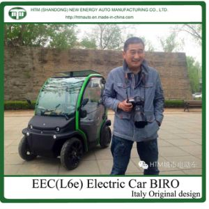 4kw Electric Golf Cart with EEC (BIRO)