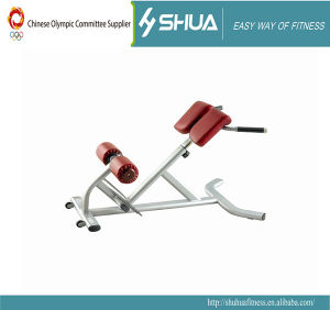 45-Degree Back Extension Sport Equipment