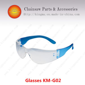 Protective Glasses pictures & photos