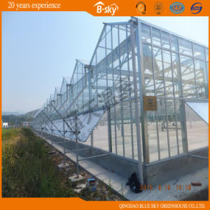 High Quality China Supplier Glass Greenhouse with PC Board Covered pictures & photos