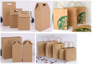 Printed Shopping Paper Bag with Hot Stamped Logo pictures & photos