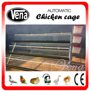 Layer Chicken Cage for Poultry Farming pictures & photos