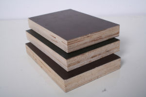 Film Faced Plywood/Construction Plywood/Shuttering Plywood pictures & photos