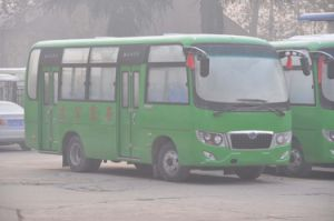 City Bus (LS6670G)