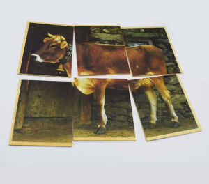 Cute Horse Printed Wood Puzzle Jigsaw pictures & photos