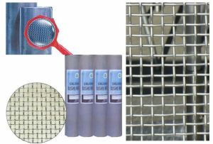 Galvanized Square Wire Mesh pictures & photos