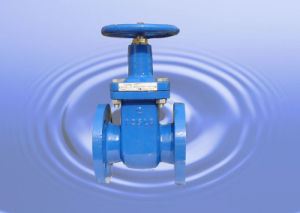 Rubber Sealing Gate Valve Z45X-10/16