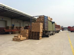 Ocean Freight From Shanghai to Vancouver/Canada pictures & photos
