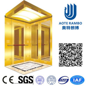 Hydraulic Home Villa Elevator/Lift with Flexible Machine Room (RLS-101) pictures & photos