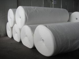 White Long Non Woven Needle Punched Polyester Geotextile pictures & photos