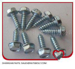 Hex Washer Head Self Tapping Screw pictures & photos