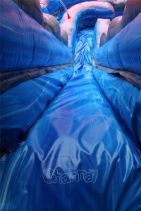 Palm Tree Inflatable Water Slide with Pool Chsl526 pictures & photos