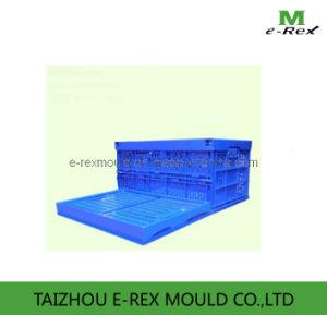 Plastic Circulation Box Mould E-H07