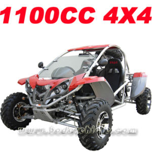 1100CC Go Kart (MC-454) pictures & photos