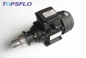 Mini Drive Gear Pump (AC motor, 220VAC / 380VAC) pictures & photos