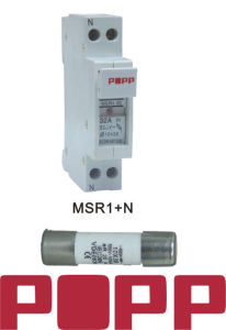 Low Voltage Fuse Link (MSR1)