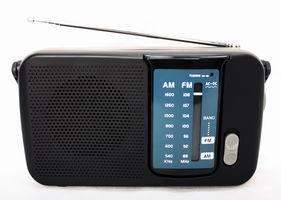 FM/SCA Portable Radio Receiver (KST-R318)