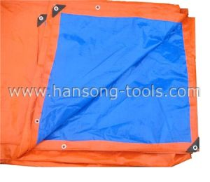 PE Tarpaulin pictures & photos