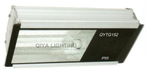 Fluorescent Lamp (QYTGL61A) pictures & photos