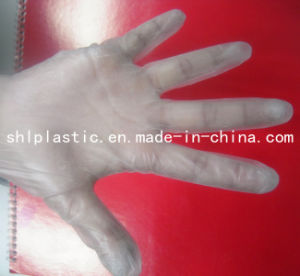 Stretch Vinyl Gloves (SHL09)