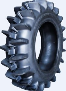 Agriculture Tire Pr1 pictures & photos