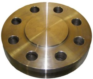 Forged/Forging Flange pictures & photos