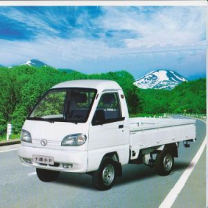 Flatbed Cargo Body (STQ1021) Mini Truck