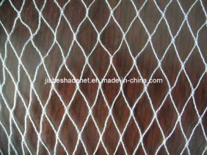 Anti-Bird Netting, HDPE Anti-Bird Net