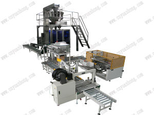 Automatic Carton Packaging Line (LB450-3) pictures & photos