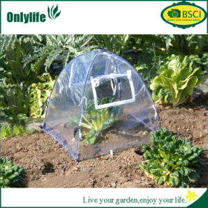 Onlylife Transparent PVC Mini Greenhouse with Zip Open Window pictures & photos