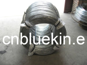 Galvanized High Carbon Steel Rope Wire pictures & photos