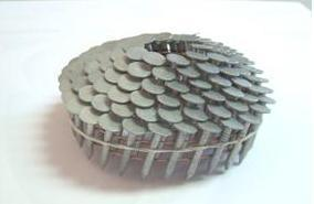 15degrees Hot Dipped Galvanized Coil Roofing Nail pictures & photos