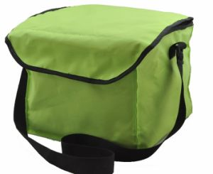 Ice Bag/Can Cooler Bag / Picnic Bag for Promotion pictures & photos