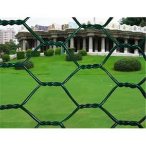 PVC Hexagonal Wire Netting S0225