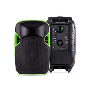 12 Inches Professional Portable LED Projection Sound Speaker pictures & photos