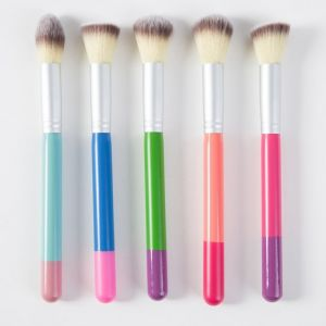 Fantastic 5PCS Corlorful Private Label Makeup Brush for Women pictures & photos