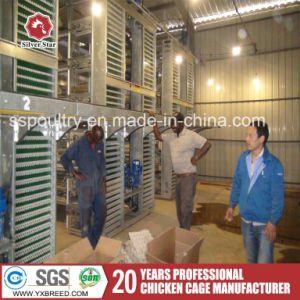 New Products Poultry Farm Equipment Bird Cages pictures & photos