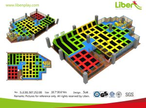 China Liben 2017 Commercial Center New Design Factory Price Trampoline pictures & photos