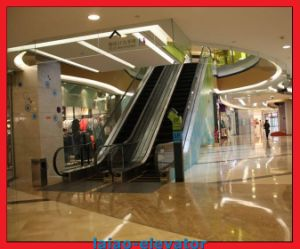 Indoor Vvvf Control Type Escalator pictures & photos
