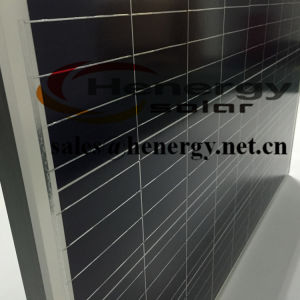50W Polycrystalline Solar Module for PV System pictures & photos