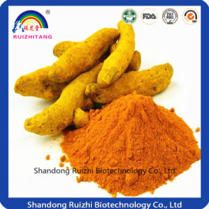 Turmeric Extact Powder Curcumin pictures & photos