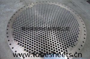 Titanium Tube Sheet for Heat Exchanger/ pictures & photos