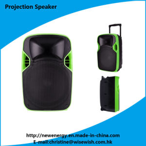 National Quality Professional Active 2.0 Stage PRO Audio Projection Speaker pictures & photos