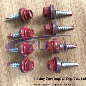 Roofing Screw 4.8X25 Ral 3005 pictures & photos