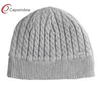 Fashion Beanie Hat 17096 pictures & photos
